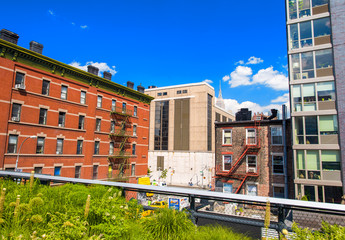 Highline Park in Manhattan with city skyline on a beautiful day