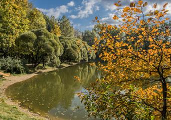 Осенний пейзаж в городском парке