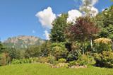 jardin dans les montagnes