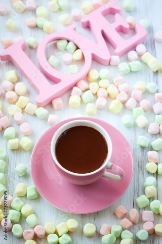 canvas print picture Hot chocolate and marshmallow