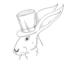 hand drawn portrait of rabbit in a tall hat
