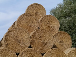 A stack of straw bales on the island Oeland in Sweden