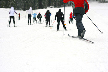 A group cross country skiing