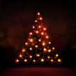 Christmas Tree - 73232645