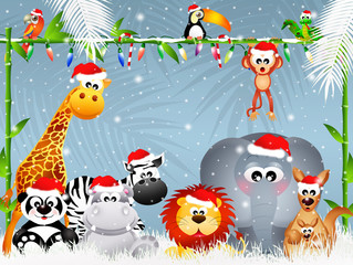 wild animals at Christmas