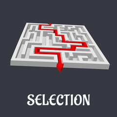 Labyrinth with the word Selection below