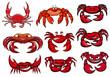 Red cartoon marine crabs set - 73234246