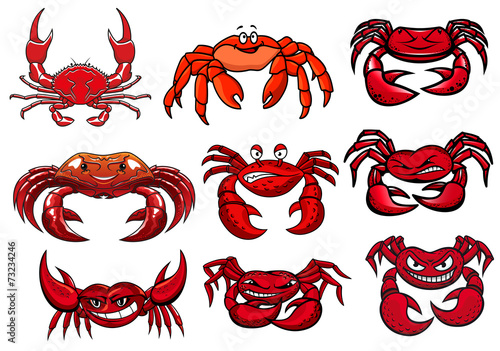 Red cartoon marine crabs set - 73234246