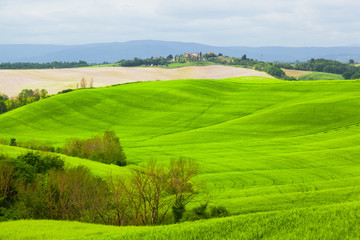 Green hills of Tuscany under the blue sky