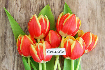 """Gracias"" card, (thank you in Spanish), with colorful tulips"