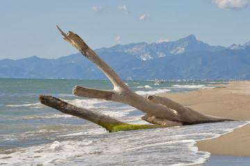 Tuscany deserted sand beach and mountains landscape