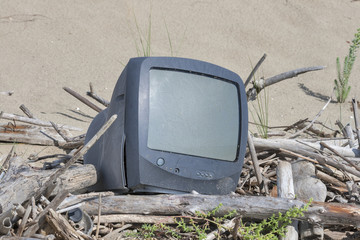 environmental contamination, sandy beach, Italy