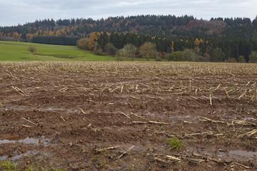Landwirtschaft - Abgeerntetes Feld