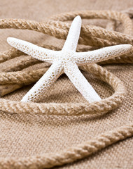 Starfish and rope