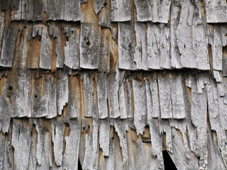 Texture of the old wood chips
