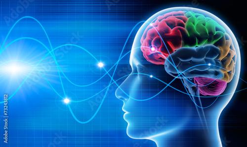 Zdjęcia na płótnie, fototapety, obrazy : Gehirn - Schwingungen 1