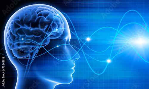Gehirn - Schwingungen 2 - 73243816
