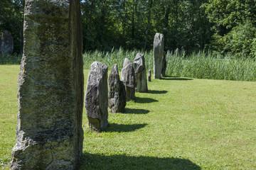 Menhire in Yverdon-les-bains