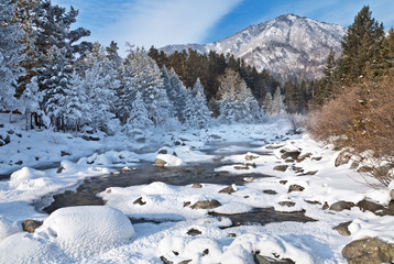 Mountain river in January day. New year's vacation in the nature