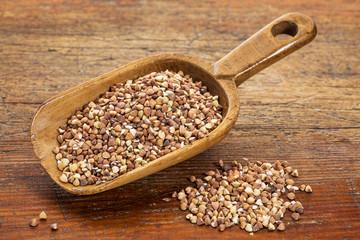 scoop of buckwheat kasha