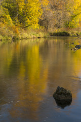 Root River In Autumn