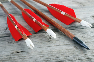 Wooden archery arrows with plastic nocks closeup