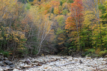 Fall in Vermont 14