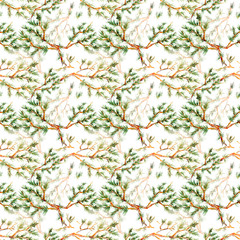 seamless texture with pine branch watercolor