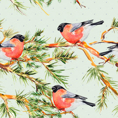 seamless texture with pine branch and bullfinch watercolor