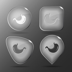 Stomach. Glass buttons. Vector illustration.