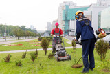 City landscapers mowing lawn with gas trimmer and lawnmower