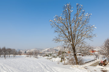 Rural field covered with snow.