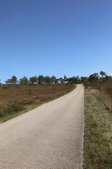 Route d'accès au Ménez-Hom.