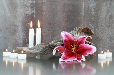 Stillleben : Lilieblüte und Kerzen