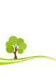 Grüner Baum auf Wiese