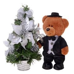 Teddy bear in costume
