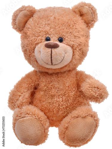 brown teddy bear - 73255653