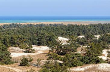 Darsser Ort at Baltic sea beach on Darss peninsula