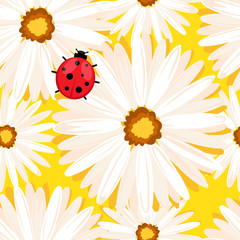 Spring seamless background with chamomile flowers. Vector EPS10.
