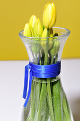 beauty, flower, stil life, tulips, yellows.home