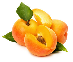 juicy apricots isolated on the white background