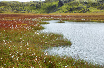 Lake in Vondugil area of Landmannalaugar