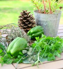 poivrons vert,herbes aromatiques