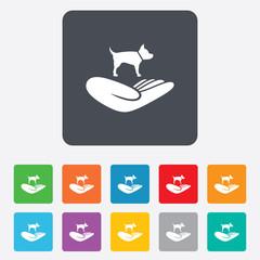 Shelter pets sign icon. Hand holds dog symbol.