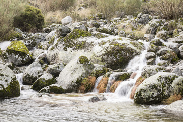 a stream in the mountain