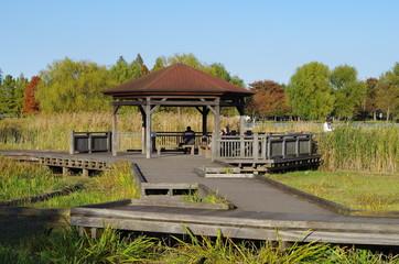 公園の東屋と木道