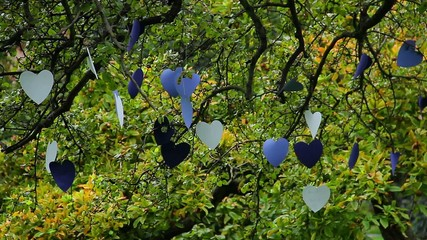 Love tree, cardboard heart shaped papers hanged for lovers
