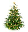 canvas print picture - Schöner, gold geschmückter Weihnachtsbaum