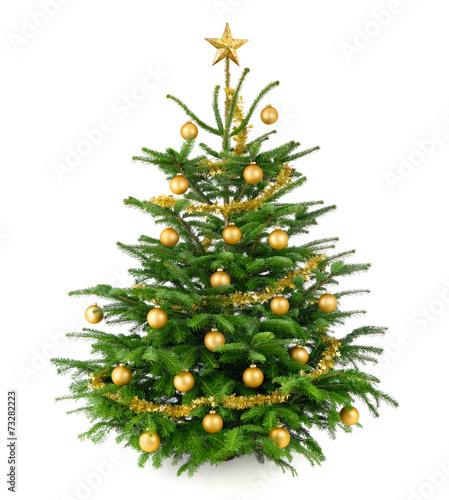 canvas print picture Schöner, gold geschmückter Weihnachtsbaum