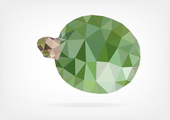 Low Poly Feijoa fruit